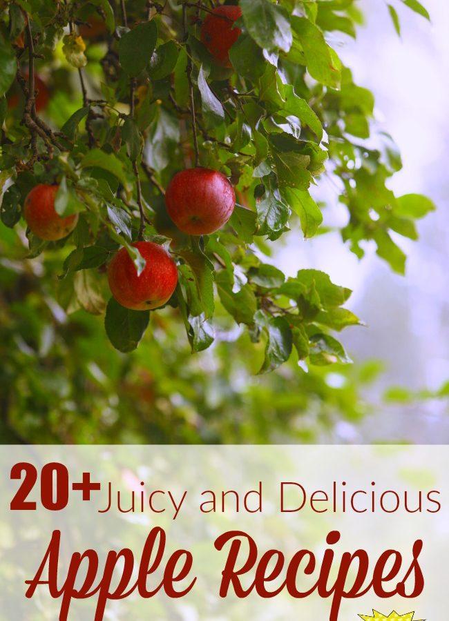 20+ Juicy and Delicious Apple Recipes