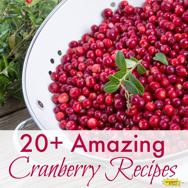 20+ Amazing Cranberry Recipes