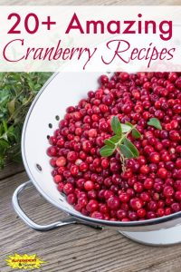 20+Amazing Cranberry Recipes