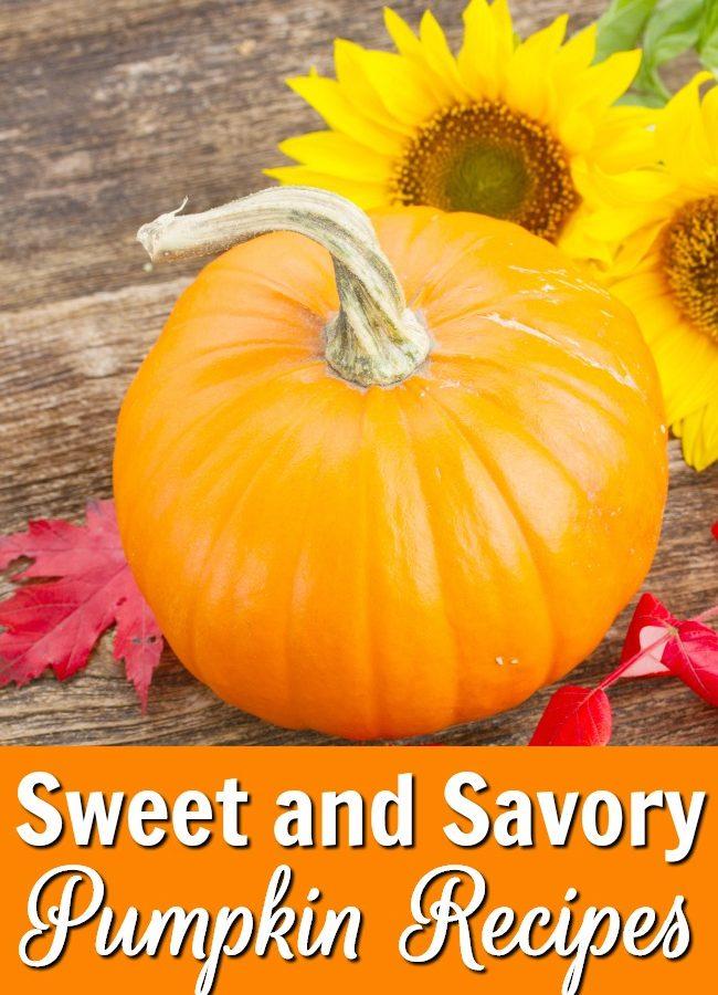 30+ Sweet and Savory Pumpkin Recipes